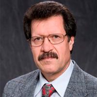 professor ntnu gjøvik polymer